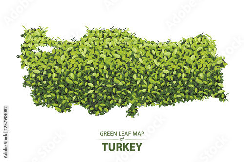 Green leaf map of turkey vector illustration of a forest is concept ...