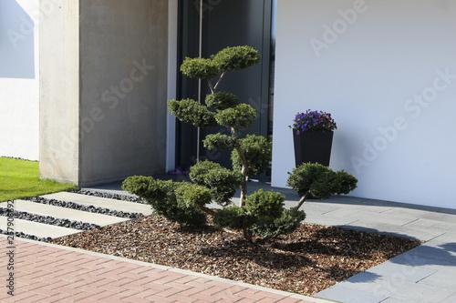 Fototapeta Wohnhaus mit gepflegtem und modernem Vorgarten  obraz