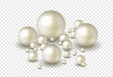 Nature ,sea Pearl Background W...