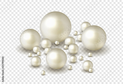 Nature ,sea pearl background with small and big white pearls isolated on transpa Canvas Print