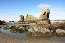Sea Stacks At Low Tide Oregon ...