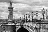 Alexandre III bridge in Paris, France - 257954244