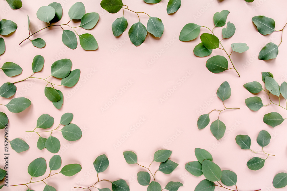 Fototapety, obrazy: The workspace is decorated with green eucalyptus leaves, floral pattern on a pink background. The apartment lay, top view. Floral frame. Frame of flowers.
