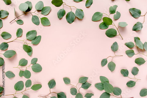 Fotografía The workspace is decorated with green eucalyptus leaves, floral pattern on a pink background