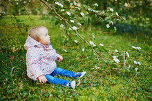 One Year Old Girl Sitting On The Grass Under Tree Branch