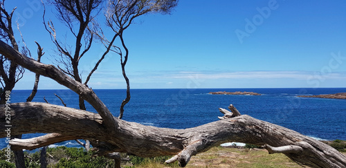 Fotografia Fingal Bay From Barry Lookout NSW Australia