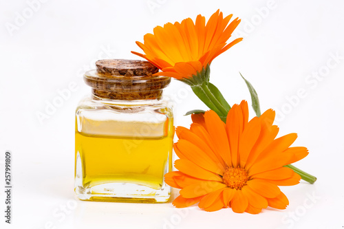 Obraz Herbal calendula officinalis in the glass and drop oil Isolated - fototapety do salonu