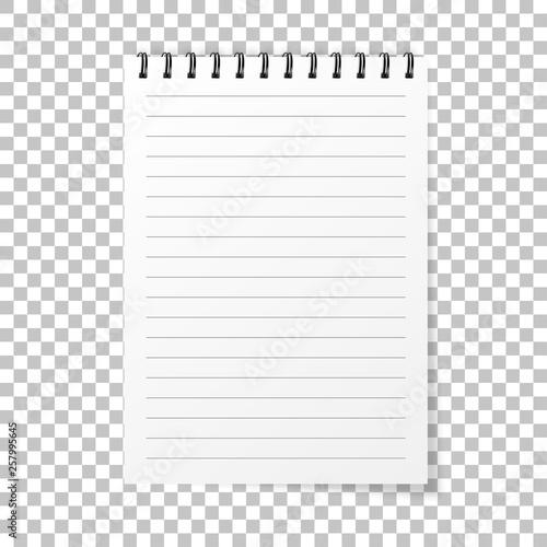 Fototapeta  Notebook mockup