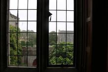 Tudor Leaded Window Shot From Inside An English Manor House. A Leaded Window Of  An English Tudor Manor House Taken From Inside.