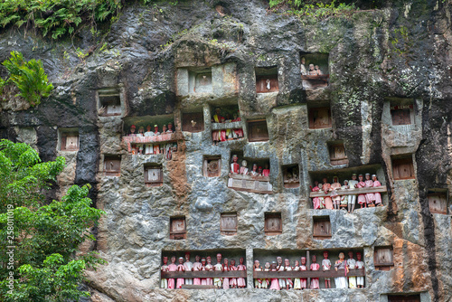 Cliffs burial site, traditional burial ground  in Tana Toraja, worldwide unique Canvas Print