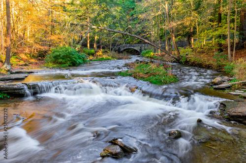 Tuinposter Sunny Creek Rapids