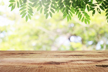 Empty Wooden And Blurred Green Nature Garden Background.