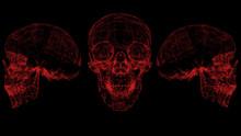 3d Rendering Red Skull Wirefra...