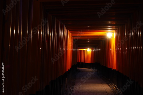 Poster Kyoto 夜の伏見稲荷大社「千本鳥居」