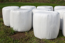 Large Silage Bales Wrapped In White Plastic Background