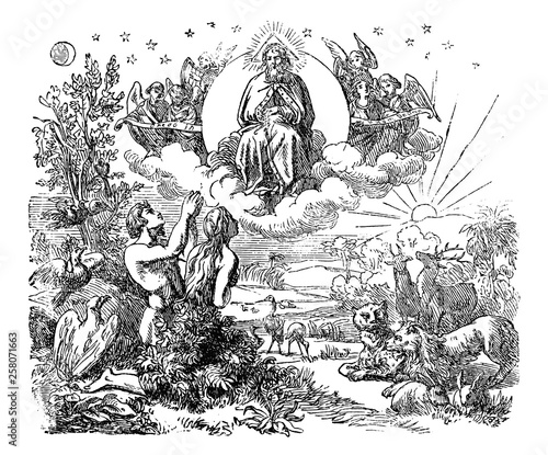 Canvas-taulu Vintage antique illustration and line drawing or engraving of biblical God and angels flying above the animals and Adam and Eve in Garden of Eden after the creation of the world