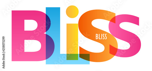 BLISS colorful typography banner Wallpaper Mural