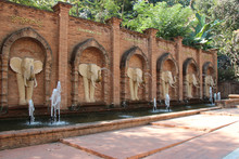 In The Zoo Of Chiang Mai (Thai...