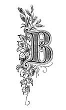 Vintage Antique Line Drawing Or Engraving Of Decorative Capital Letter B With Floral Ornament Or Embellishment Around. From Biblische Geschichte Des Alten Und Neuen Testaments, Germany 1859.