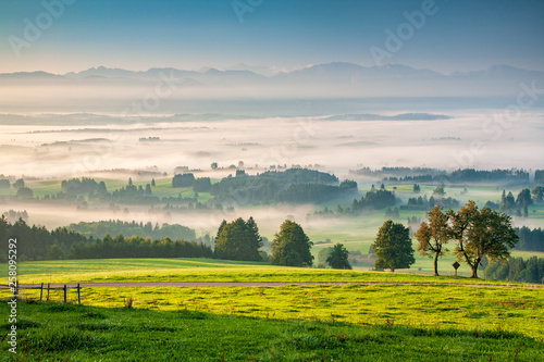 Foto auf Leinwand Blau Jeans View from Mt. Auerberg at sunrise, Valley full of Fog, the Alps behind, Bavaria, Germany