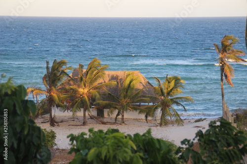 Foto Cozy resort house with coconut trees on the shores of the Indian Ocean in Kenya