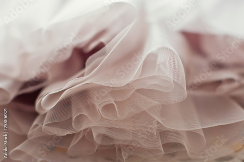 Fotografie, Obraz Pink tutu skirt