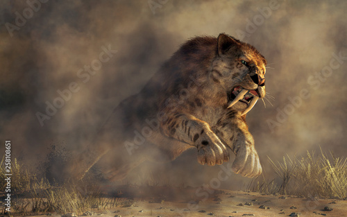 Photo Kicking up a spray of dirt, a massive smilodon, a beast of fur and fang, leaps out of the murky mists