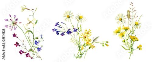 Fotografia Watercolor multicolored bouquets of wild flowers