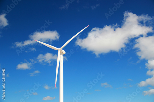 Fotografia, Obraz  Cata vento energia eólica