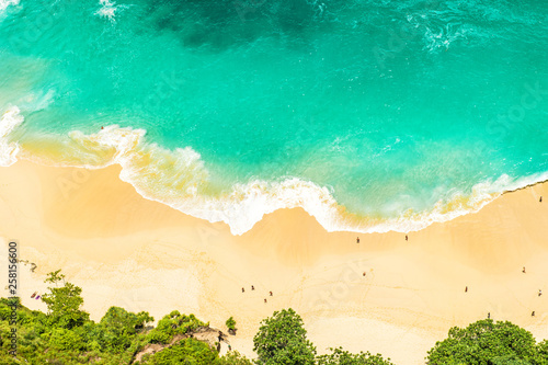 Wall Murals Green coral Sand beach sea water Summer holidays travel background
