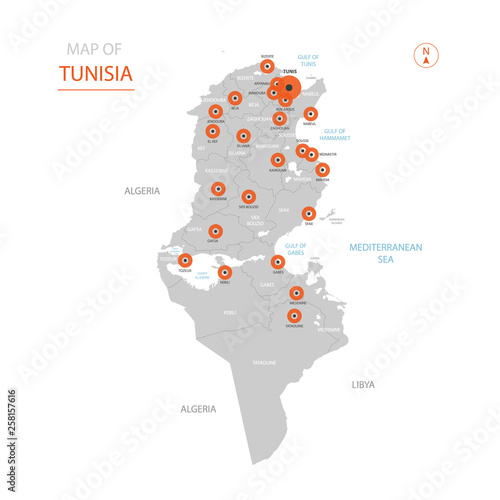Cuadros en Lienzo Stylized vector Tunisia map showing big cities, capital Tunis, administrative divisions