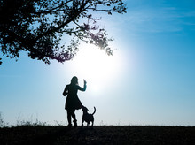 Silhouettes Of Adorable Woman Playing Running With Her Cute Dog During Sunset