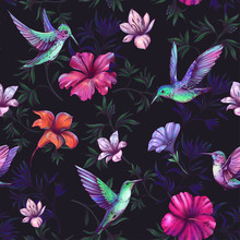 Seamless Pattern With Hummingb...