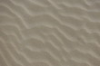 Background from beach sand