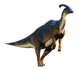 A parasaurolophus, a type of herbivorous ornithopod dinosaur of the hadrosaur family stands on two legs. This prehistoric animal is on a solid white background. 3D Rendering