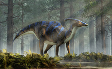 A Parasaurolophus, A Type Of Herbivorous Ornithopod Dinosaur Of The Hadrosaur Family In Profile Stands In A Forest Of Fir Trees With A Floor Of Ferns With Rays Of Light Shining Down. 3D Rendering.