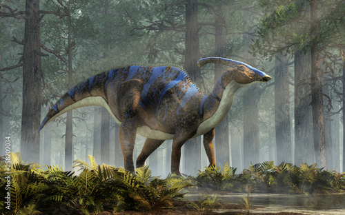 A parasaurolophus, a type of herbivorous ornithopod dinosaur of the hadrosaur family in profile stands in a forest of fir trees with a floor of ferns with rays of light shining down Canvas-taulu