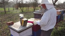 Apiarist Is Control Situation ...
