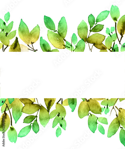 Fototapety, obrazy: Watercolor tree leaves