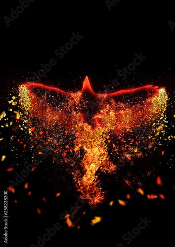 火の鳥 Canvas Print
