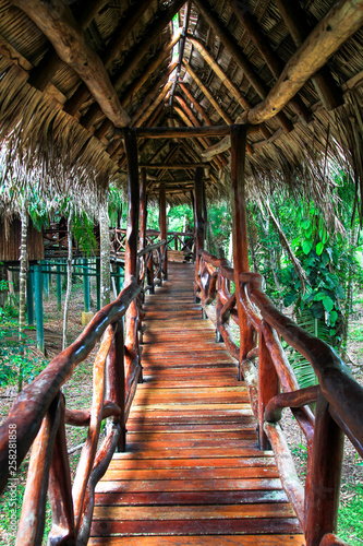 An elaborate wood railing on an elevated wood walkway as part of a remote jungle resort in southern Belize Canvas Print