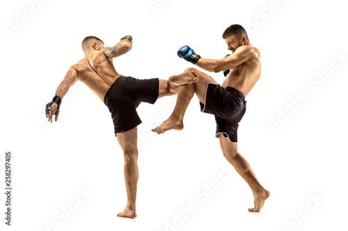 MMA Canvas-taulu