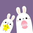 Two rabbit bunny friends holding painting egg, chicken bird. Happy Easter. Cute cartoon kawaii funny baby character set. Farm animal. Violet pastel background. Flat design