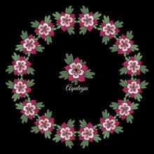 Vector Circle Frame With Aquilegia Flower Isolated On The Black