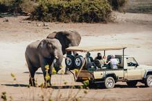 Touristen Begegnen Einer Grupp...