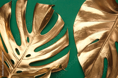Golden monstera leaf on green background Wallpaper Mural