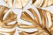 Leinwanddruck Bild - Golden monstera leaves on white background