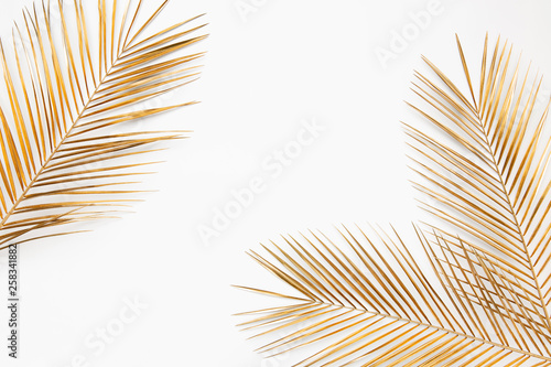 Gold painted date palm branches on white background