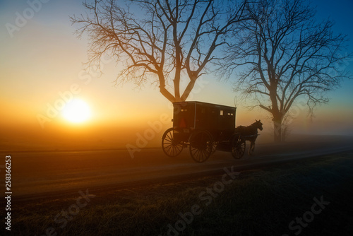 Photo Stands South Africa Amish Buggy at Sunrise with Sun on Horizon