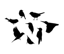 Vector Silhouettes Of Birds. I...